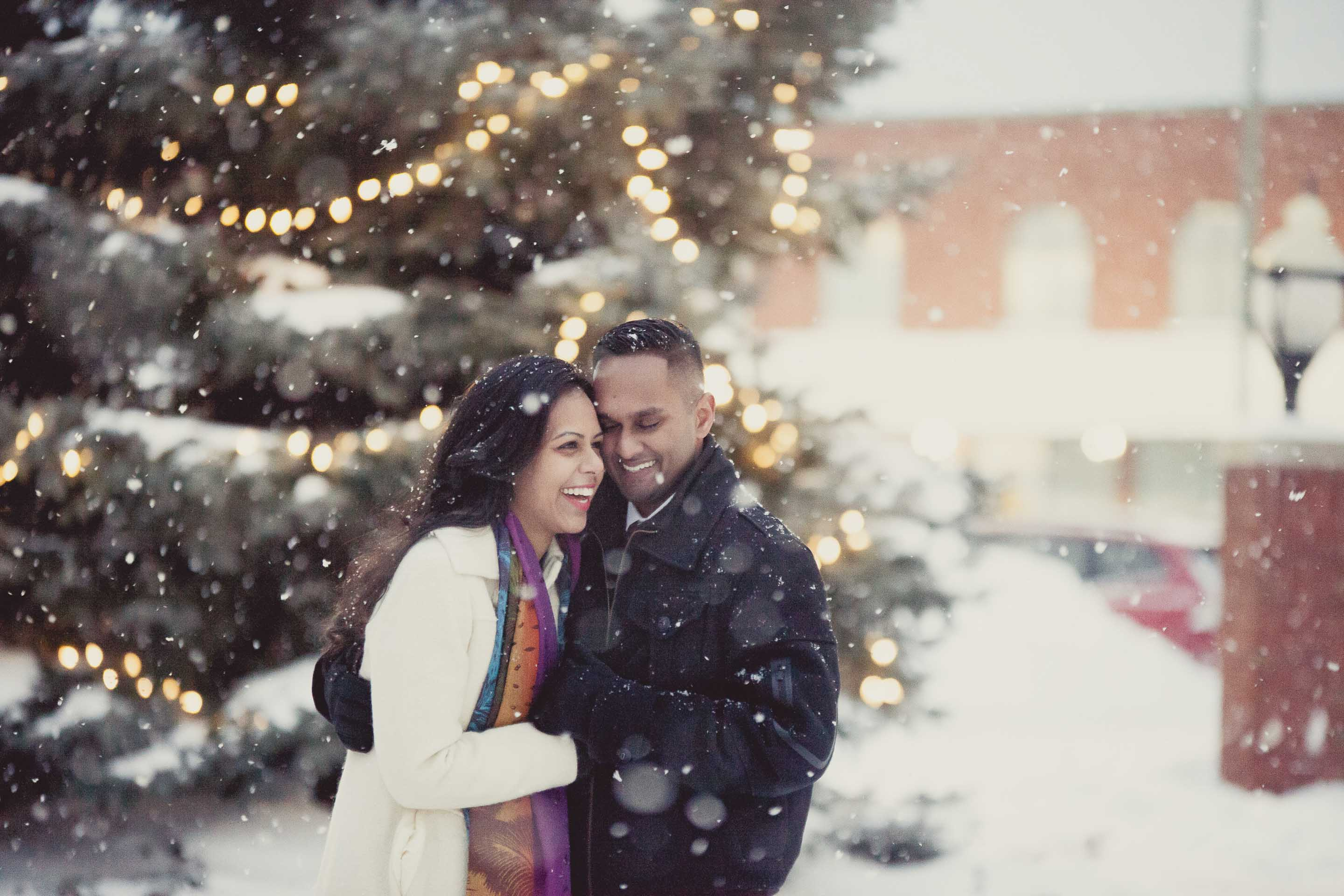 winter surprise proposal